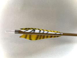 Carbonpfeil Tigerente Federform M1 Superspeed