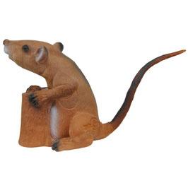 Longlife Sitzende Ratte