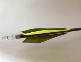 Carbonpfeil Avocado
