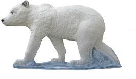 SRT junger Eisbär