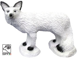 SRT weißer Fuchs laufend