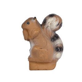 Franzbogen Eichhörnchen