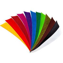 Feder RW Shield 4 Zoll einfarbig