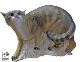 SRT laufende Wildkatze
