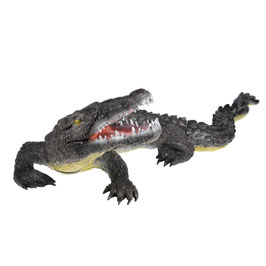 Franzbogen Großer Alligator