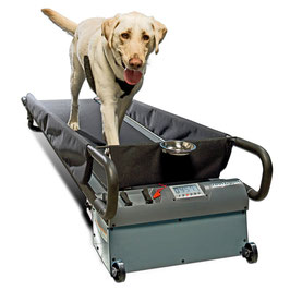 DogTread Hundelaufband -Pro Large-   (Hunde bis 70Kg)