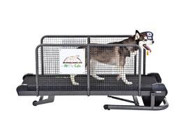 Fit Fur Life Hundelaufband medium