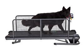 Fit Fur Life Hundelaufband professional