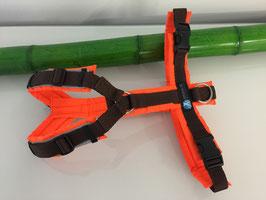 annyx Brustgeschirr Protect - leuchtorange/braun