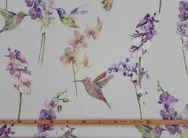 Canvas Orchideen und Vögel