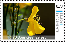 "Briefmarke ""Ginsterblüte"""