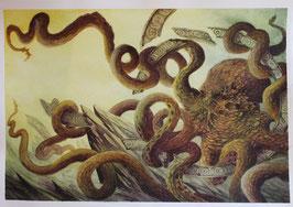 Pieuvre - Aquarelle