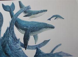 Baleine - Aquarelle