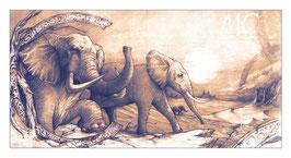Tirage limité - Elephant