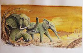 Elephant - Aquarelle