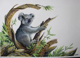 Koala - Aquarelle