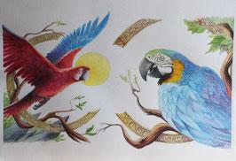 Perroquet - Aquarelle