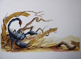 Scorpion- Aquarelle