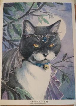 Portrait personnalisé en couleur