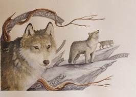 Loups - Aquarelle