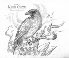 Original - Corbeau