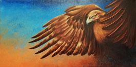 Mit Flügeln wie Adler