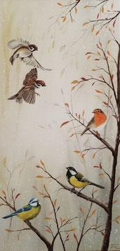 Singvögel im Winter