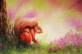 Eichhörnchen im Heidekraut