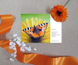 """Postkarte """"Schmetterling - Kleiner Fuchs"""""""