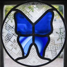 Papillon bleu 1