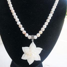 collier coquillage fleur nacre