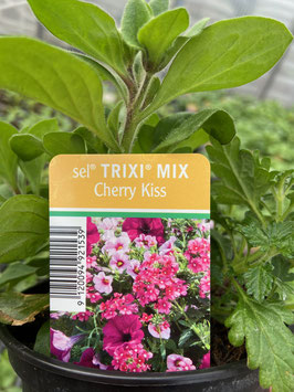 Trixi Mix ´Cherry Kiss´