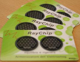 1x RayChip®-Karte (2 RayChip®)