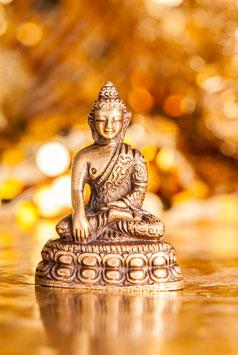 Shakyamuni Buddha  FI-298