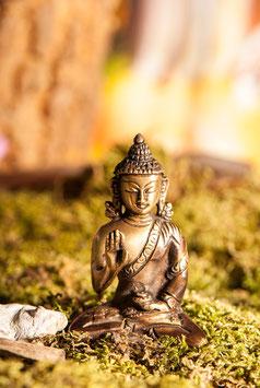 Amoghasiddhi Dhyani Buddha FI-206