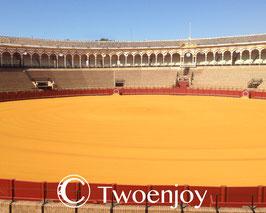Arènes de Seville