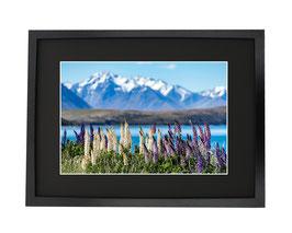 Lake Telapo Nouvelle-Zelande