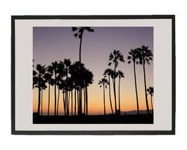 Coucher de soleil sur Venice Beach