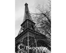 Tour Eiffel Jardin