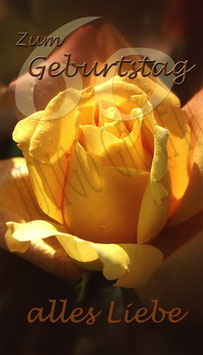 Weinetikette 60. Geburtstag Rose