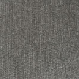 Bio Canvas - dark grey