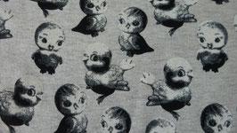 Sweat graugrundig Vögel