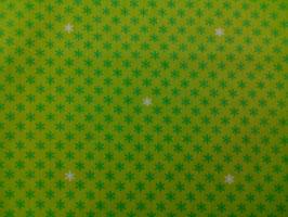 Baumwolle grün Blümchen