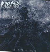 "CHORDOTOMY ""The Precious Ideal"" CD"