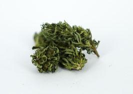 Sour Widow   Treibhaus 10% CBD >0,3%  THC / 8g Pack