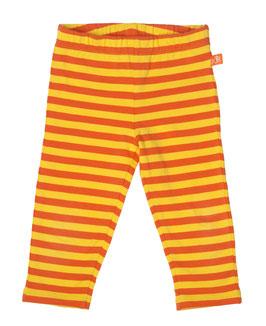 Lipfish Hose, orange/gelb