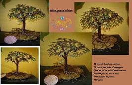 Mon grand olivier