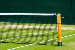 Wimbledon 2019 zum TOP-Preis