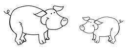 Schweine RUDI & POLDI