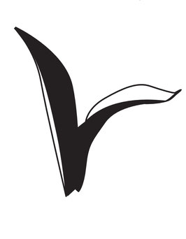 SET Tulpenblatt maxi